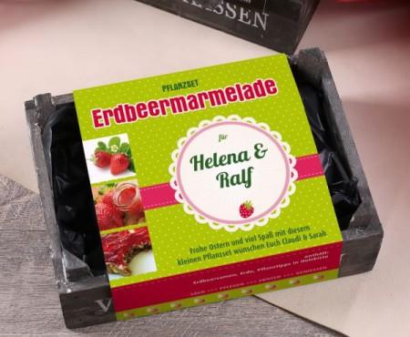 Pflanzset für Erdbeermarmelade in einer Holzkiste